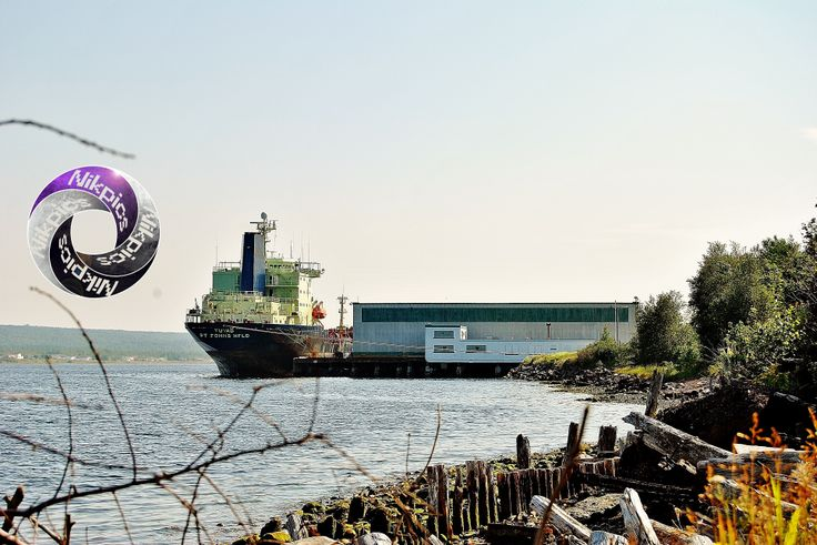Botwood, Newfoundland. Since the closure of Abitibi Price we surely do miss these boats coming in our harbour!