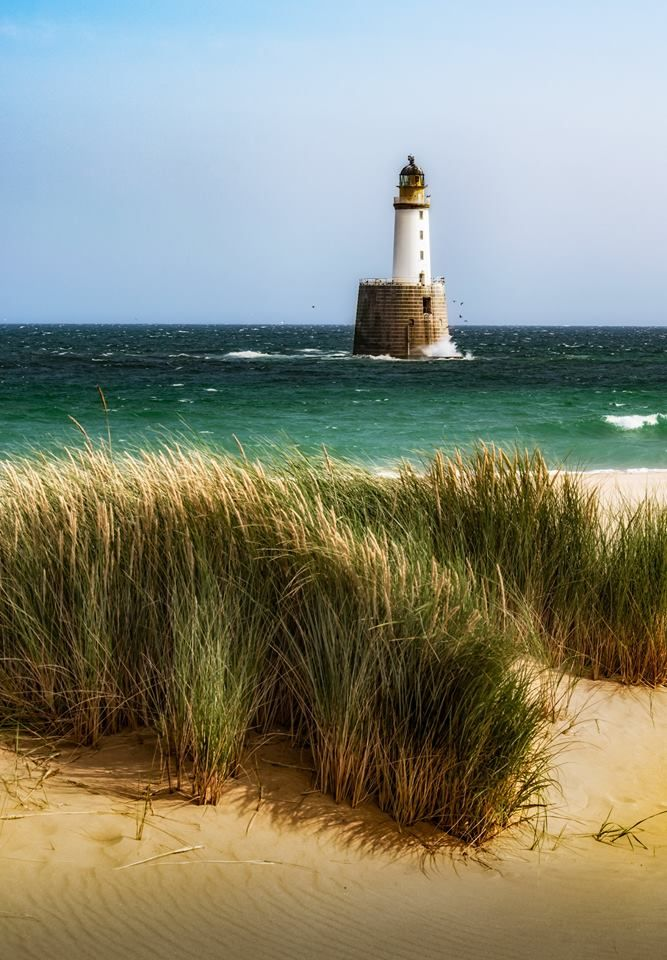 Rattray Head Lighthouse and a windswept grass.