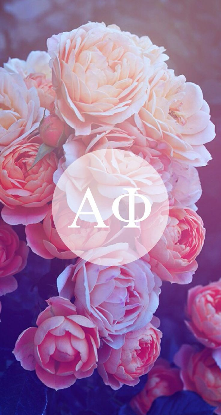 Love this iPhone background!! Courtesy of UConn Aphi
