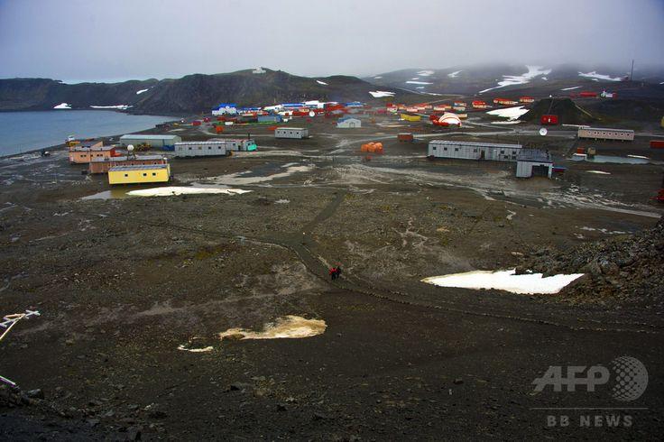 南極にあるロシアのベリングスハウゼン基地(Bellingshausen Station、2014年3月11日撮影、資料写真)。(c)AFP/VANDERLEI ALMEIDA ▼13Aug2014AFP|南極のユスリカ、昆虫で最小のゲノムで過酷環境に適応か 米研究 http://www.afpbb.com/articles/-/3022974