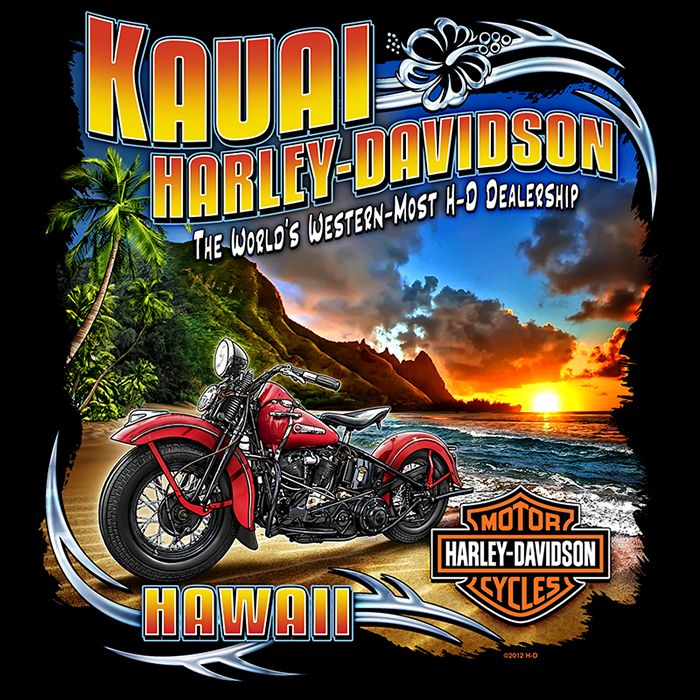 Harley Davidson Dealer Backprints By Michelle Janich At Coroflot Com Harley Davidson Posters Harley Davidson Artwork Harley Davidson Wallpaper