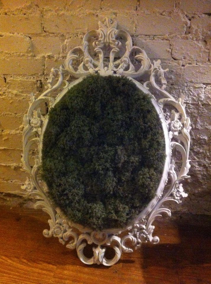 Wall decorations, moss in the frame, christmas decorations