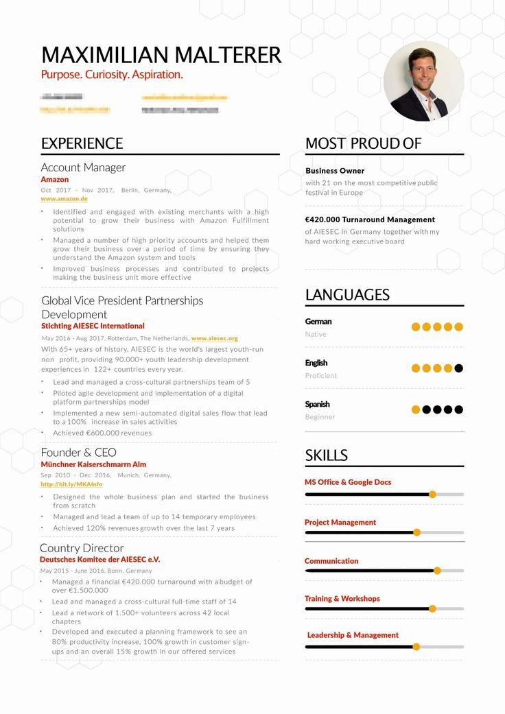 Non Profit Resume Examples Best Of Successful Resume Non
