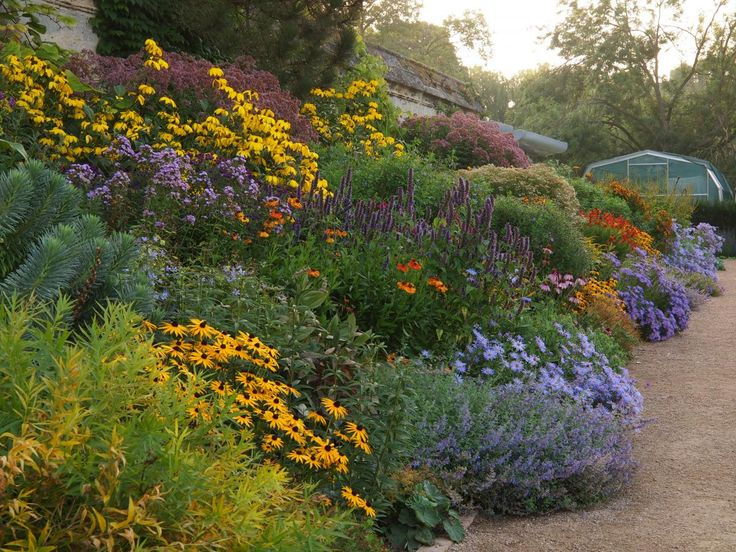 Oxford Botanic Gardens The Herbaceous Border in late summer - love the unusual colour combination
