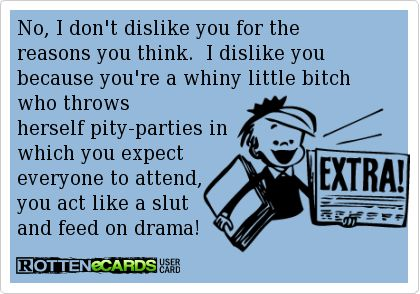 No, I dont dislike you for the reasons you think.  I dislike you because youre a whiny little bitch who throws herself pity-parties in which you expect everyone to attend, you act like a slut and feed on drama!