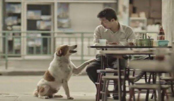 Este hermoso corto sobre la generosidad llegará a tu corazón (Video)