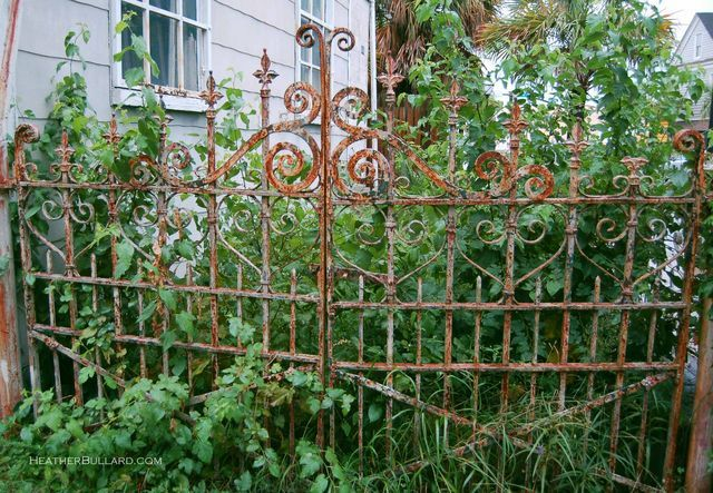 "This would be cool to put in front of a plant covered privacy fence... a gate into a magical world?? lol ""Pretty Iron Gate"""