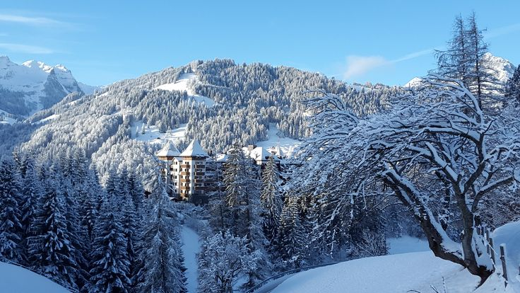 Welcome to Winter Wonderland! @thealpinagstaad #beyondtheexpected #thealpinagstaad
