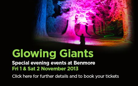 Royal Botanic Garden Edinburgh - Benmore Botanic Garden