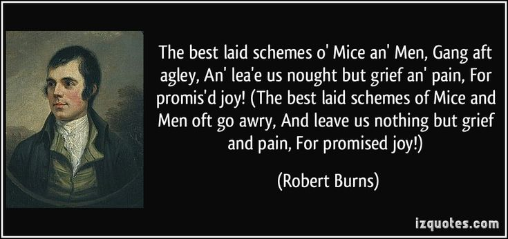 The best laid schemes o' Mice an' Men, Gang aft agley, An' lea'e us nought but grief an' pain, For promis'd joy! (The best laid schemes of Mice and Men oft go awry, And leave us nothing but grief and pain, For promised joy!)  - Robert Burns