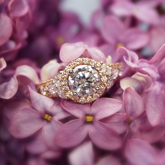 2470 best Wedding Rings and Jewelry images on Pinterest Rings