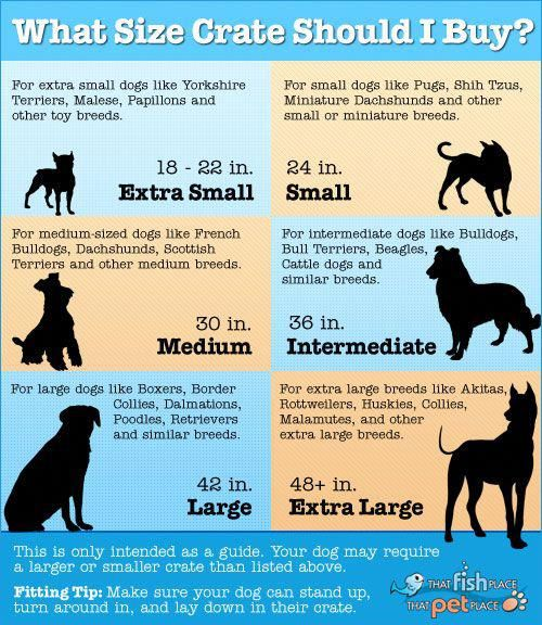Crate Size For Your Dog Dog Training Obedience Dog Training Dog Crate Sizes
