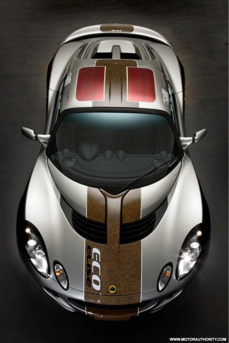 https://i.pinimg.com/736x/a6/12/08/a612080b398701ecddeec5c55a39dcf6--hemp-lotus-car.jpg