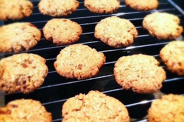 Chocolade kokos koekjes - Francesca Kookt