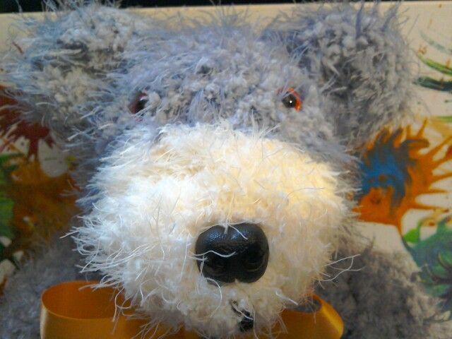 Bruce big nose bear