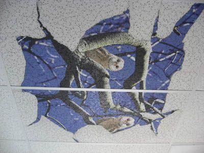 Charming 12 Inch By 12 Inch Ceiling Tiles Big 1200 X 1200 Floor Tiles Round 12X12 Ceramic Floor Tile 12X24 Slate Tile Flooring Old 18 Inch Floor Tile Orange20 X 20 Floor Tiles 14 Best Acoustic Ceiling Tiles   Paint Em! Images On Pinterest ..