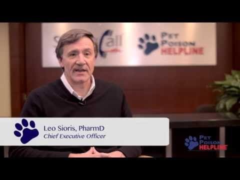 Pet Poison Helpline | Animal Poison Control Center