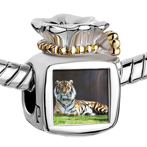 Pugster Two Tone Money Bag Tiger Crouching on Grass Photo Beads Fits Pandora Charm Chamilia Biagi Bracelet Pugster. $14.49. Fit Pandora, Biagi, and Chamilia beads. Measures 9mm X 11mm. Pugster are adding new designs all the time. Unthreaded European story bracelet design. Diameter is 5mm