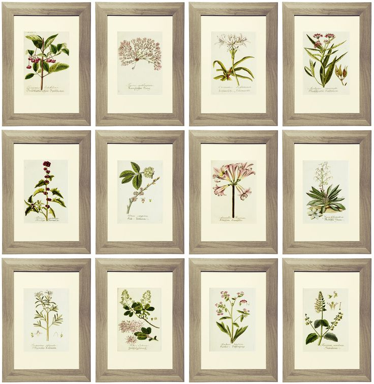 "Free Printable Lavender Gallery Wall with beautiful botanical prints. Images are formatted to be printed for an 8"" x 10"" or 11"" x 14"" frame. www.simplymadebyrebecca.wordpress.com"