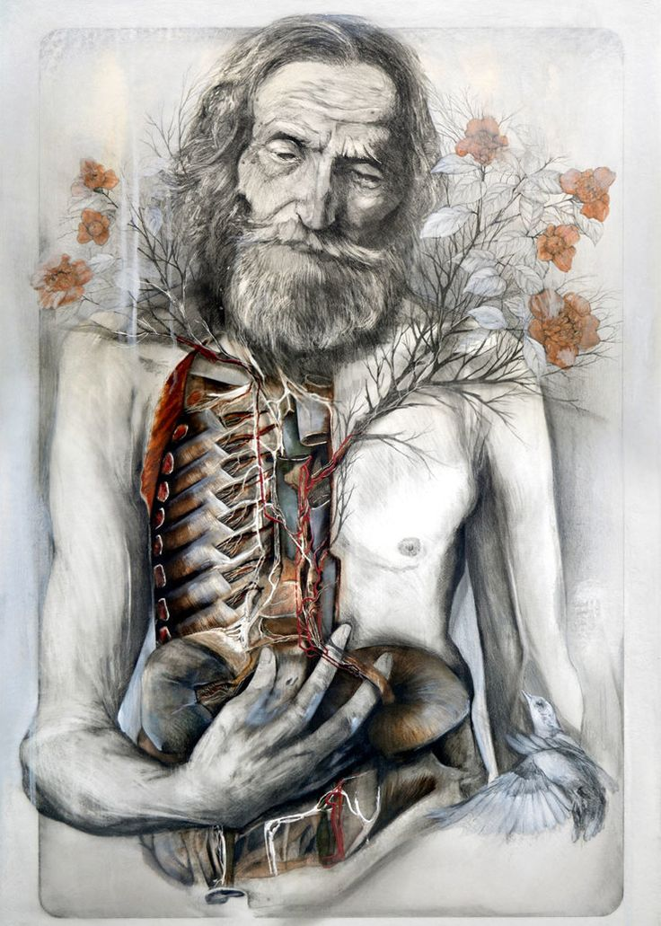 New Anatomical Graphite And Oil Paintings By Nunzio Paci http://designwrld.com/new-anatomical-graphite-and-oil-paintings-by-nunzio-paci/