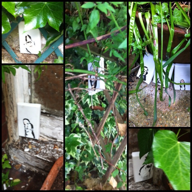 I've hidden 10 small paintings in the garden ... You're welcome to go and find them