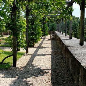 17 beste afbeeldingen over tuin op pinterest tuinen kleine tuinen en wijnstokken - Wijnstokken pergola ...