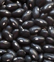 Manfaat Kacang Hitam - Manfaat dan khasiat