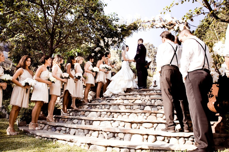 81 Best Images About Backyard Wedding And Handfasting Ideas On A Budget On Pinterest