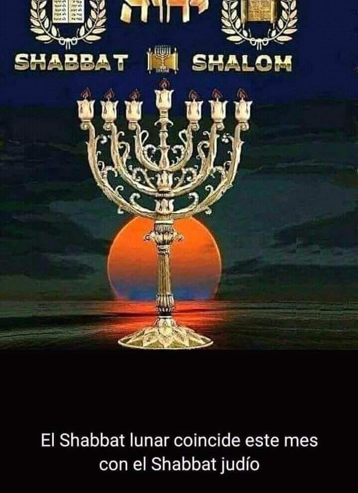 Pin De M Lopez Vie En Israel Cultura Hebrea Candelabro Judio Judios