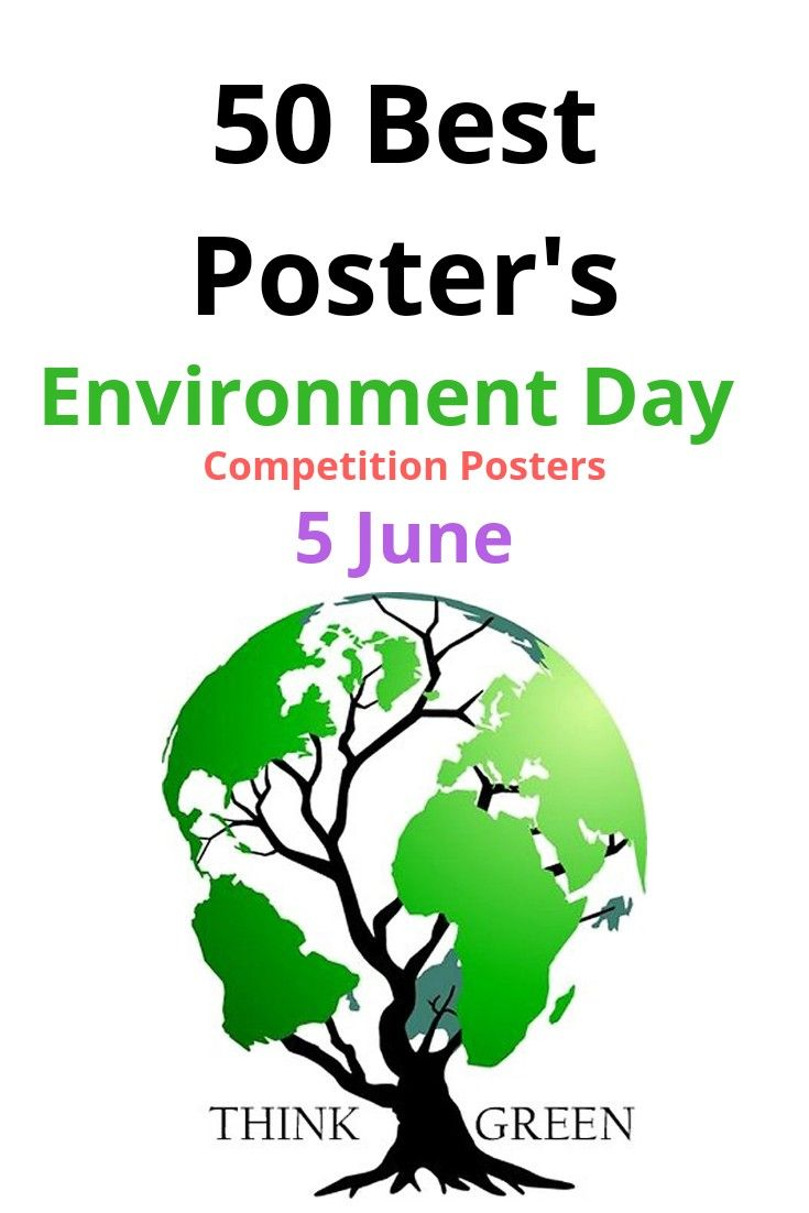 Poster For Environment Day Celebration Environmental World Posters Essay On