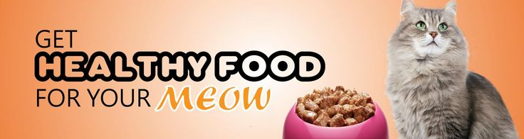 Get Flat 10% Discount On Food, Cage & Toys of Cats Get Flat 10% Discount On Food, Cage & Toys of Cats (T&C apply)