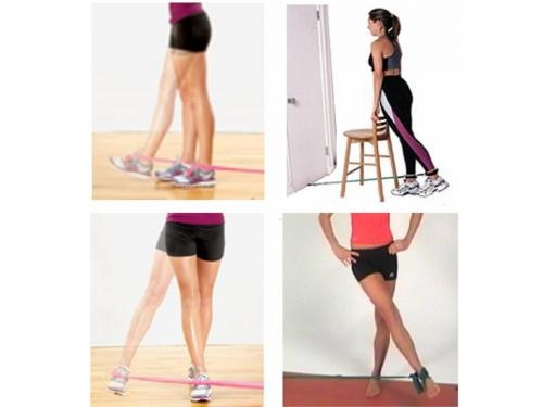 hip exercises& rehab protocols for knee