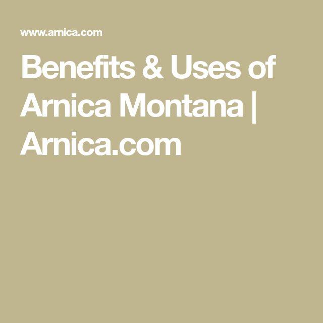 Benefits & Uses of Arnica Montana | Arnica.com