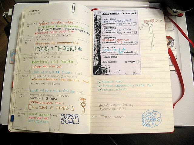 Moleskine planner, 2-page week (reminders, action steps, etc)