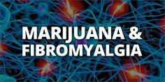 """Fibromyalgia: Is Marijuana The Best Treatment? 