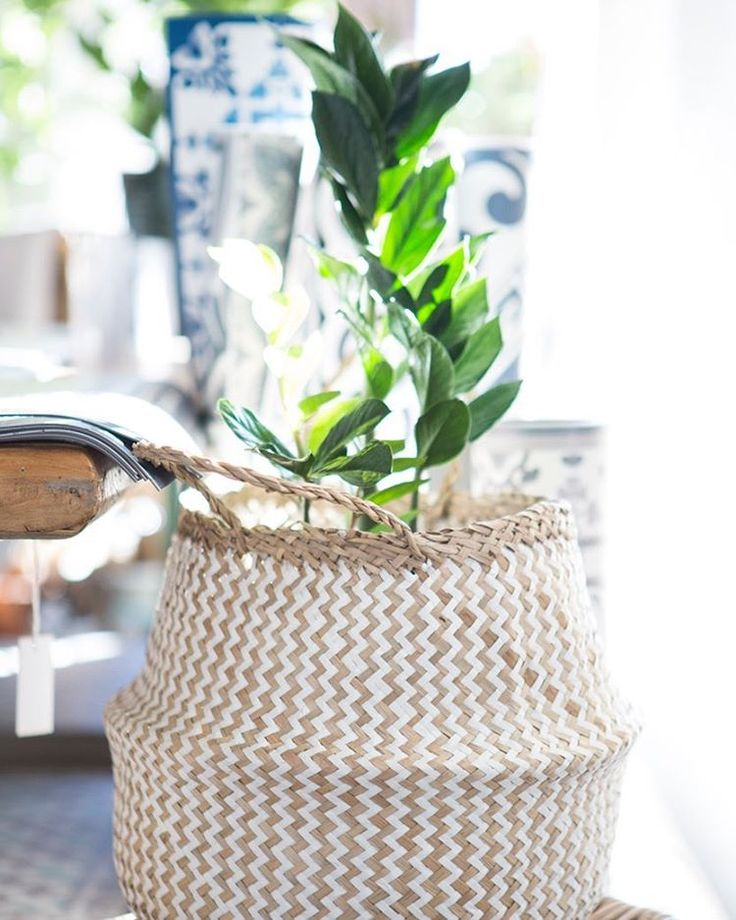 Tara Dennis Store | Basket | Plant | Planter | Planter basket |Homewares | Homedecor | Interior style | Boho style | Coastal Home