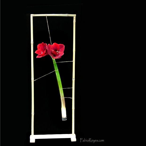 122 best images about flower guild inspirations on for Amarilis decoration