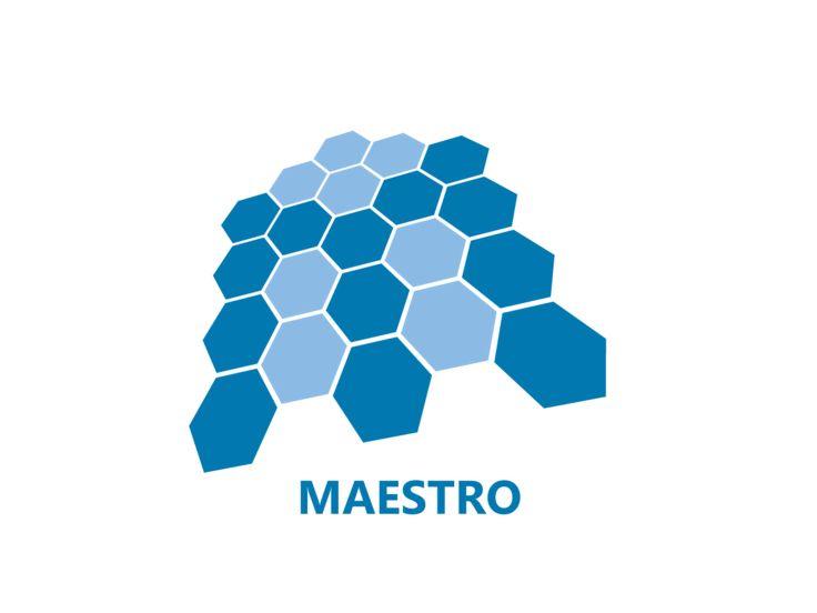 Maestro - Logo Design