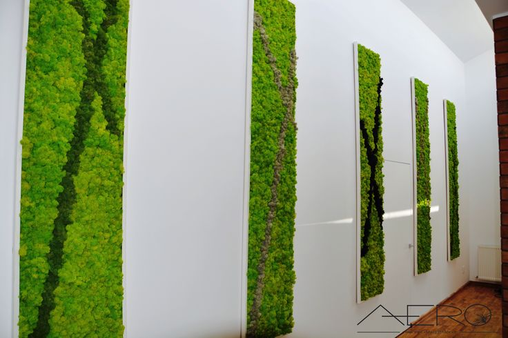 Canvases filled with reindeer moss, great for interior design as they fill up any room with a natural ambiance . Panza acoperita cu muschi, perfecte pentru design interior aducand o ambianta naturala pricare incaperi.