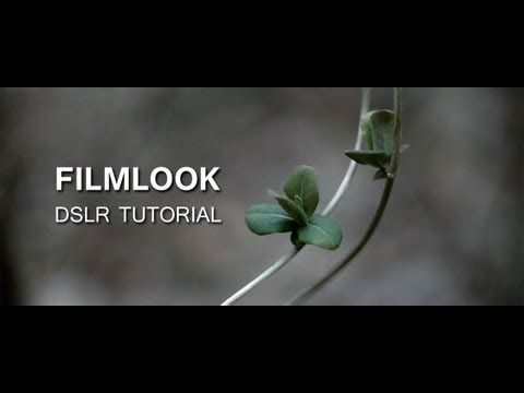 How to achieve a Film Look – DSLR film making – YouTube | planet5D curated digital image news