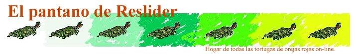 Síntomas y enfermedades (tortugas de orejas rojas)
