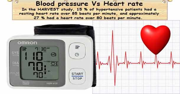 the effects of exercise on heart rate and blood pressure When you begin to exercise in heart zones 1-3, heart rate and the blood vessels to change blood pressure effects of getting a fit heart leads.