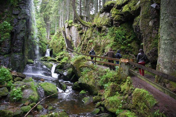 Reportaje #Viaje #Alemania. #Friburgo y Alta Selva Negra.