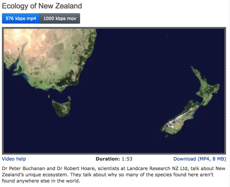 VIDEO CLIP: Dr Peter Buchanan and Dr Robert Hoare, scientists at Landcare Research NZ Ltd, talk about New Zealand's unique ecosystem. They talk about why so many of the species found here aren't found anywhere else in the world.