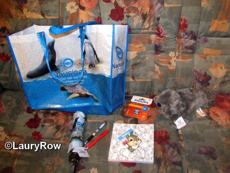 """ACHATS/CADEAUX du 23/07/17 : le sac, le parapluie et les deux stylos et ma peluche du phoque gris proviennent de chez Nausicàa de Boulogne-sur-mer achetés par Maman♥ , ma carte mémoire acheté par moi provient de la FNAC de Boulogne-sur-mer , et mon livre de coloriage des """"Babies"""" les carrés d'art thérapie provient du relais de la gare de Lille ."""