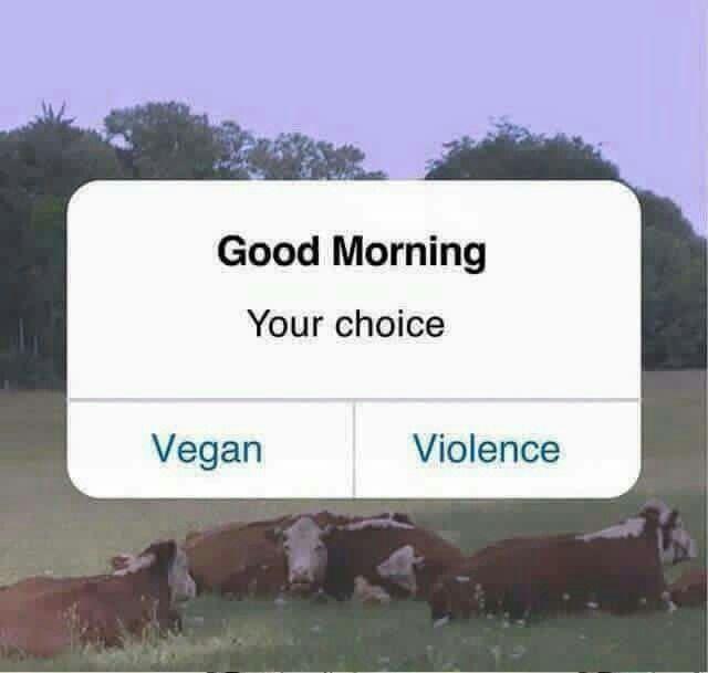 Choice is obvious. Choose compassion , choose VEGAN. DP