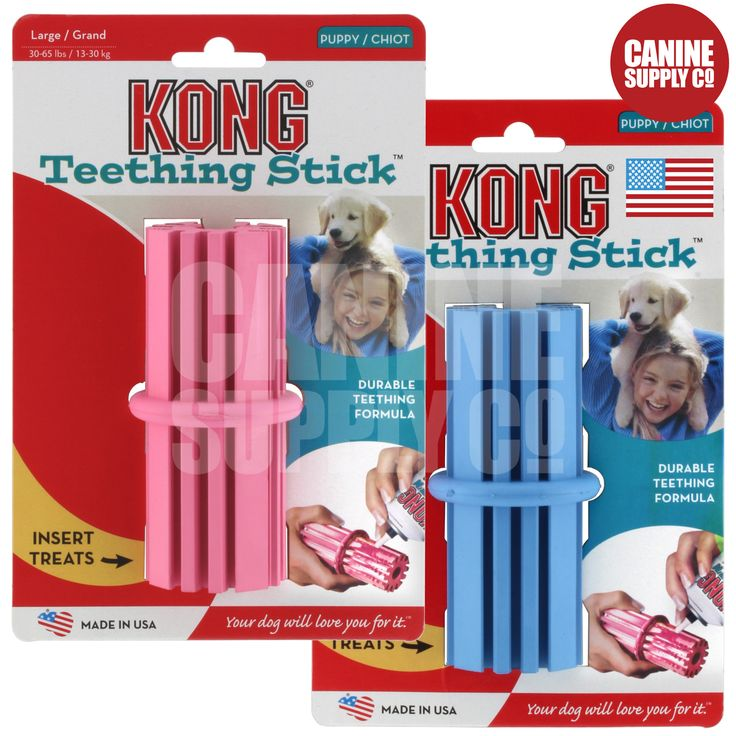 Kong Puppy Teething Stick Dog Toy - All Sizes