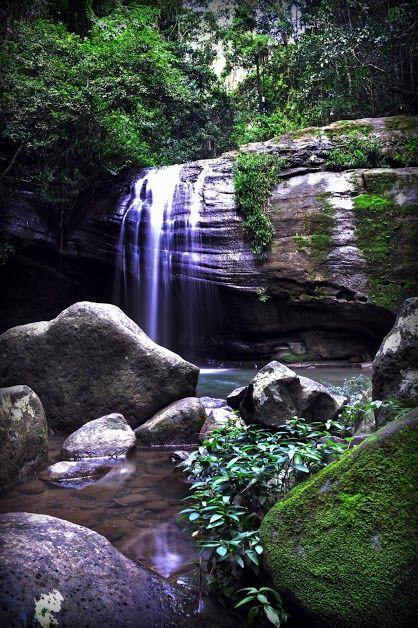 Serenity Falls is located in Buderim on the Sunshine Coast, Queensland, Australia