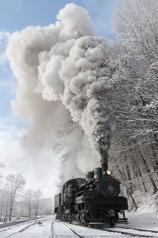 photo of the Cass Scenic Railroad's Shay #6 ...