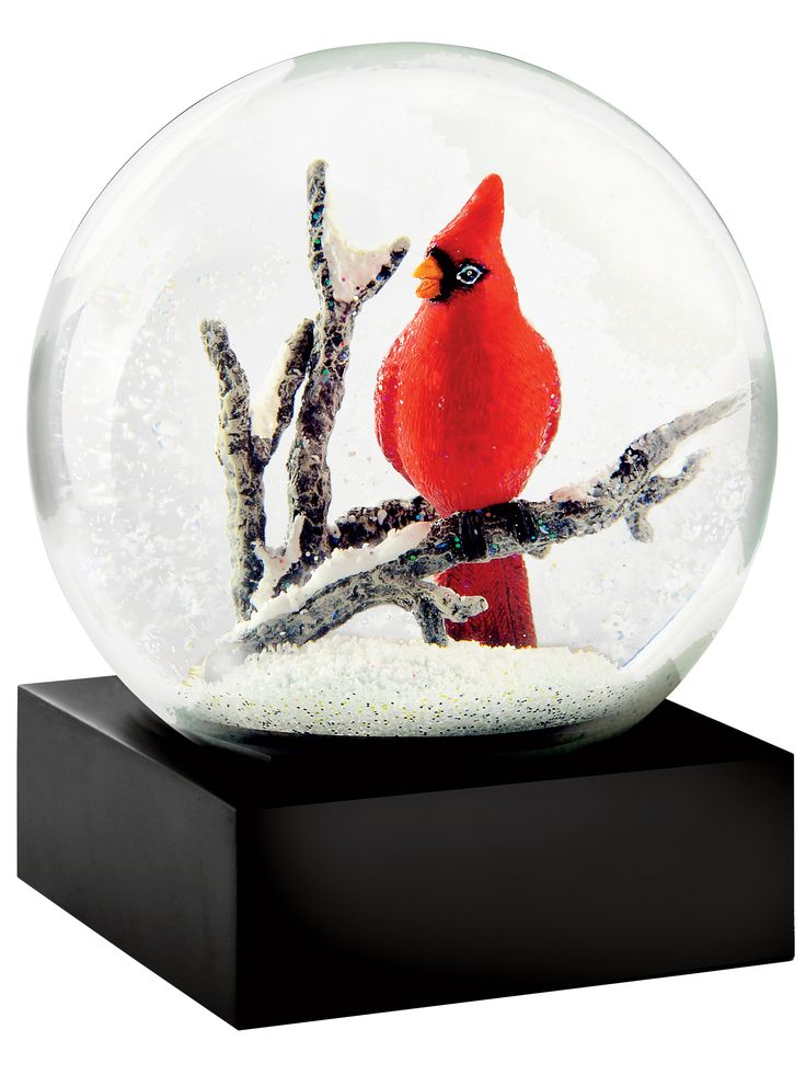 Best snowglobes images on pinterest water balloons